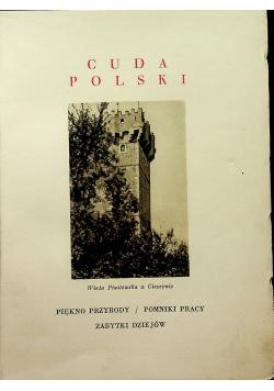 Cuda Polski Śląsk