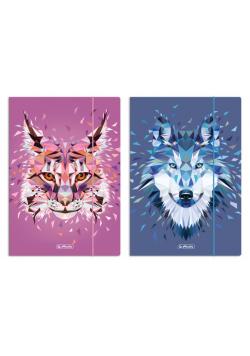 Teczka rysunkowa A4 z gumką Wild Animals mix
