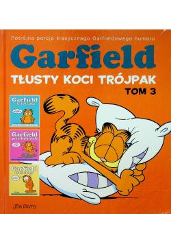 Garfield Tłusty koci trójpak Tom 3
