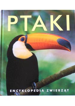 Ptaki Encyklopedia zwierząt