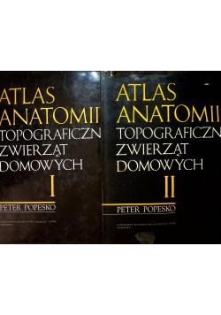 Atlas Anatomii Topograficznej Zwierząt Domowych Tom I i II
