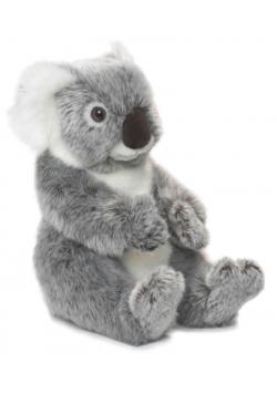 Koala 22 WWF