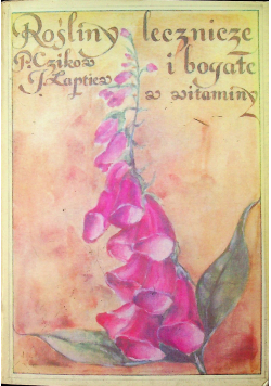 Rośliny lecznicze bogate w witaminy