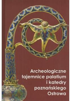 Archeologiczne tajemnice palatium  i katedry poznańskiego Ostrowa