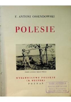 Polesie ok 1934 r