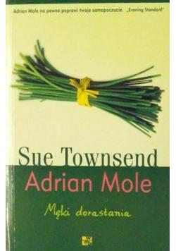 Adrian Mole Męki dorastania