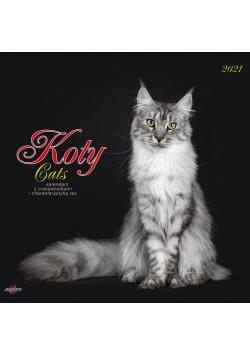 Kalendarz 2021 KAD-9 Koty AVANTI