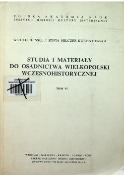 Studia i materiały do osadnictwa Wielkopolski wczesnohistorycznej to VI