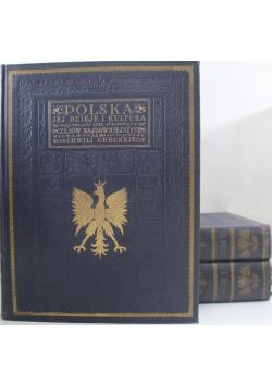 Polska jej dzieje i kultura czasów najdawniejszych aż do chwili obecnej tom od I do III  192 r