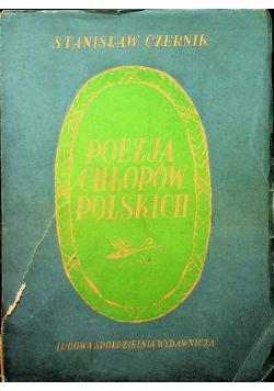 Poezja chłopów polskich