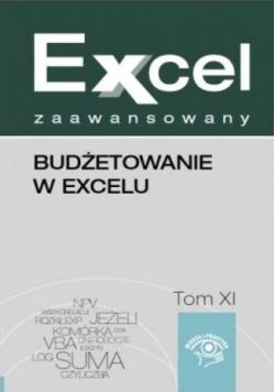 Excel zaawansowany Budżetowanie w excelu Tom XI