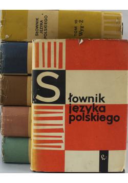 Słownik języka polskiego 6 tomów