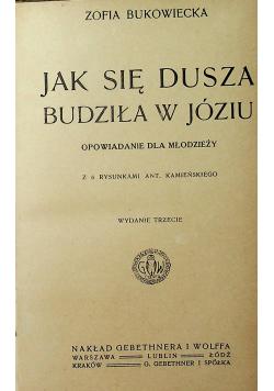 Jak się dusza budziła w Józiu 1919 r.