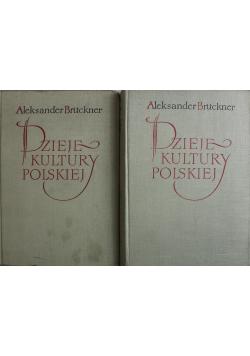 Dzieje kultury polskiej Tom II i III