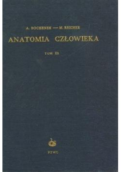 Anatomia człowieka Tom III