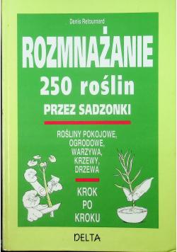 Rozmnażanie 250 roślin przez sadzonki