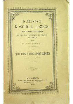 O Jedności Kościoła Bożego 1885 r.