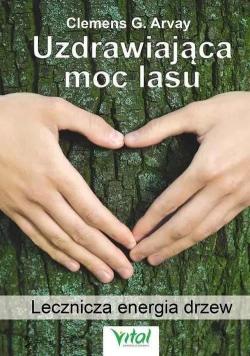 Uzdrawiająca moc lasu