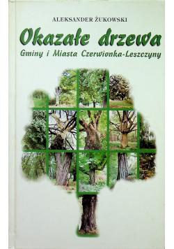 Okazałe drzewa Gminy i Miasta Czerwionka Leszczyny