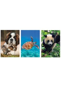 Teczka rysunkowa A4 z gumką Animals mix