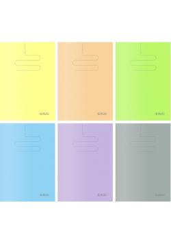 Zeszyt B5/60K kratka PP Colors (5szt)