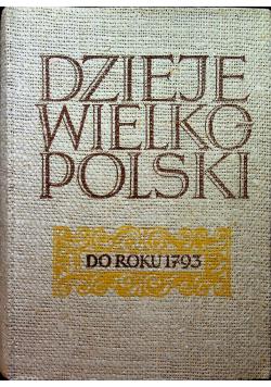 Dzieje wielkopolski do roku 1793