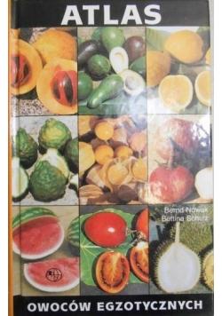 Atlas owoców egzotycznych