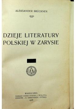 Dzieje literatury polskiej w zarysie 2 tomy  1908 r
