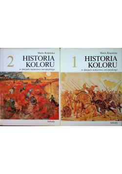 Historia koloru w dziejach malarstwa europejskiego Tom I i II
