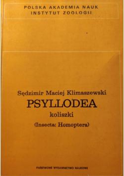 Psyllodea koliszki