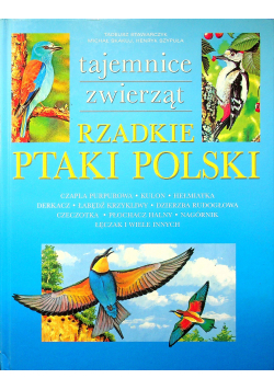 Rzadkie ptaki Polski