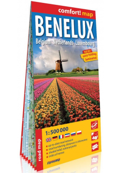 Benelux Belgia Holandia Luksemburg 1:500 000