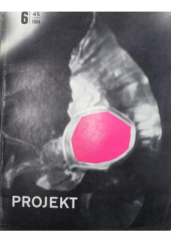 Projekt Nr 6