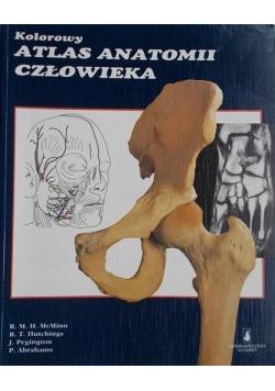 Kolorowy atlas anatomii człowieka