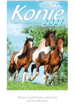 Kalendarz 2021 Reklamowy Konie w obiektywie RW13