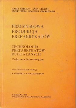 Przemysłowa produkcja prefabrykantów