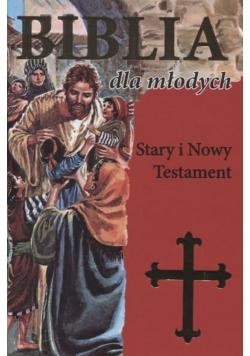 Biblia dla młodych Stary i Nowy Testament