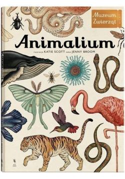 Animalium wydanie 3