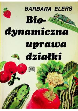 Biodynamiczna uprawa działki
