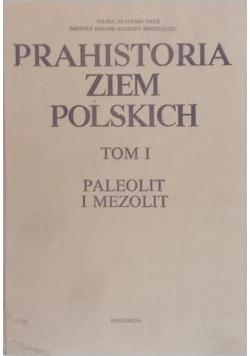 Prahistoria ziem Polskich Tom I