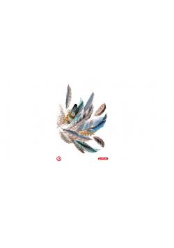 Brulion A4/96K kratka Feathers (5szt)