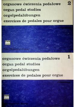 Organowe ćwiecznia pedałowe