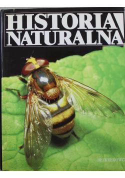 Historia Naturalna Bezkręgowce