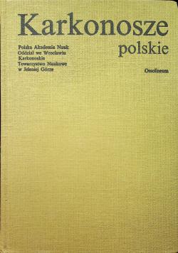 Karkonosze polskie
