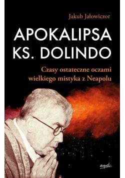 Apokalipsa ks. Dolindo. Czasy ostateczne oczami..