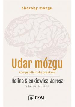 Udar mózgu. Kompendium dla praktyka