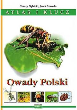 Owady Polski Atlas i klucz