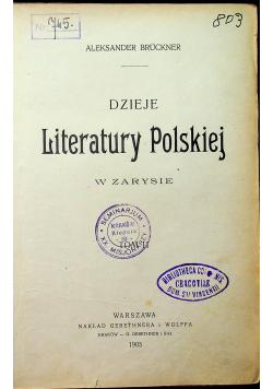 Dzieje literatury polskiej w zarysie 1903r