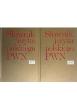 Słownik języka polskiego PWN 2 tomy