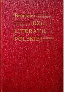 Dzieje literatury polskiej w zarysie tom II 1908 r